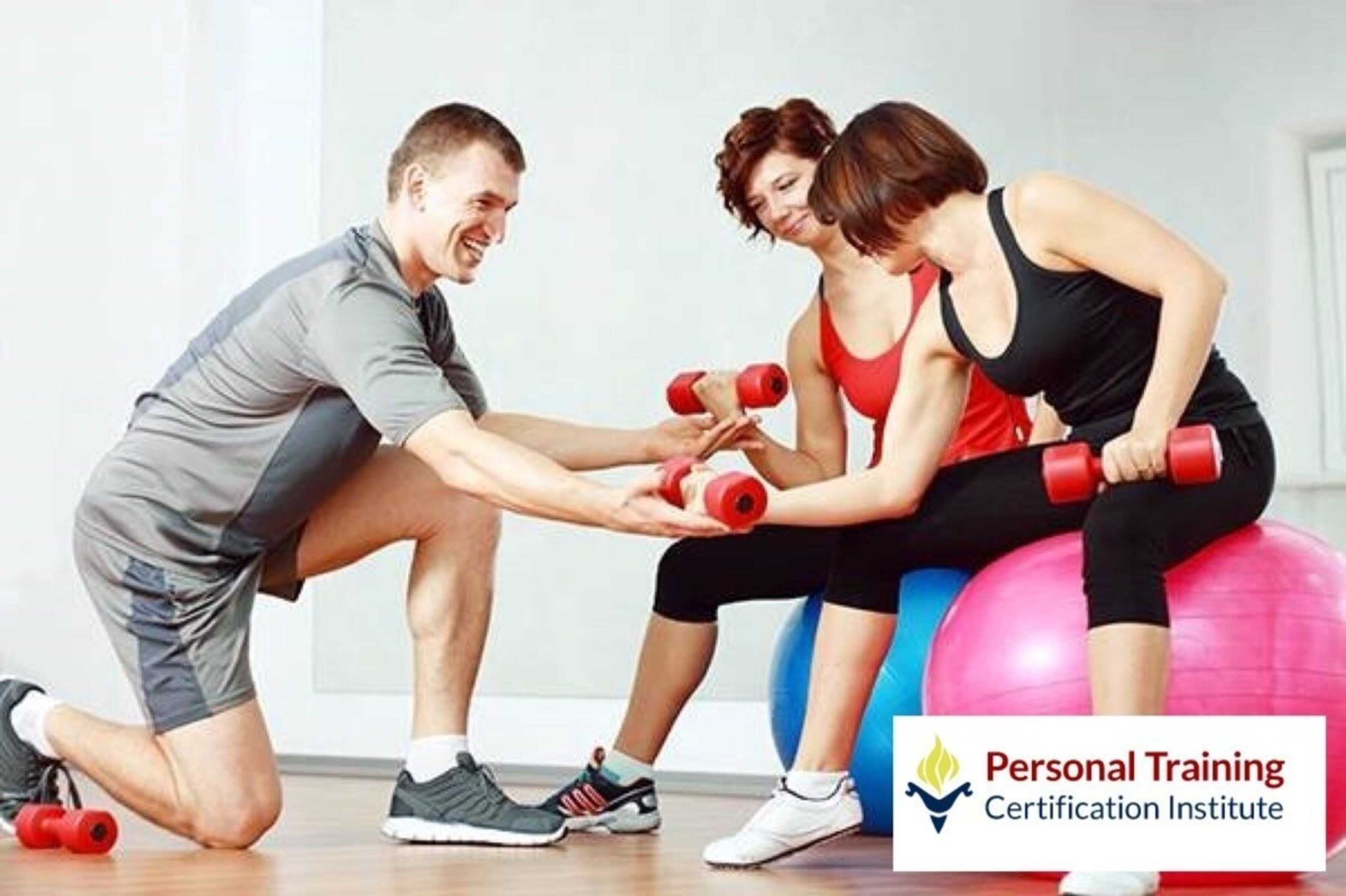 Personal Training Certification Institute Launches Website and New Programs for Aspiring Fitness
