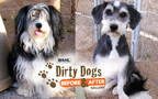 Vote for your favorite shelter dog makeover at DirtyDogsGallery.com.
