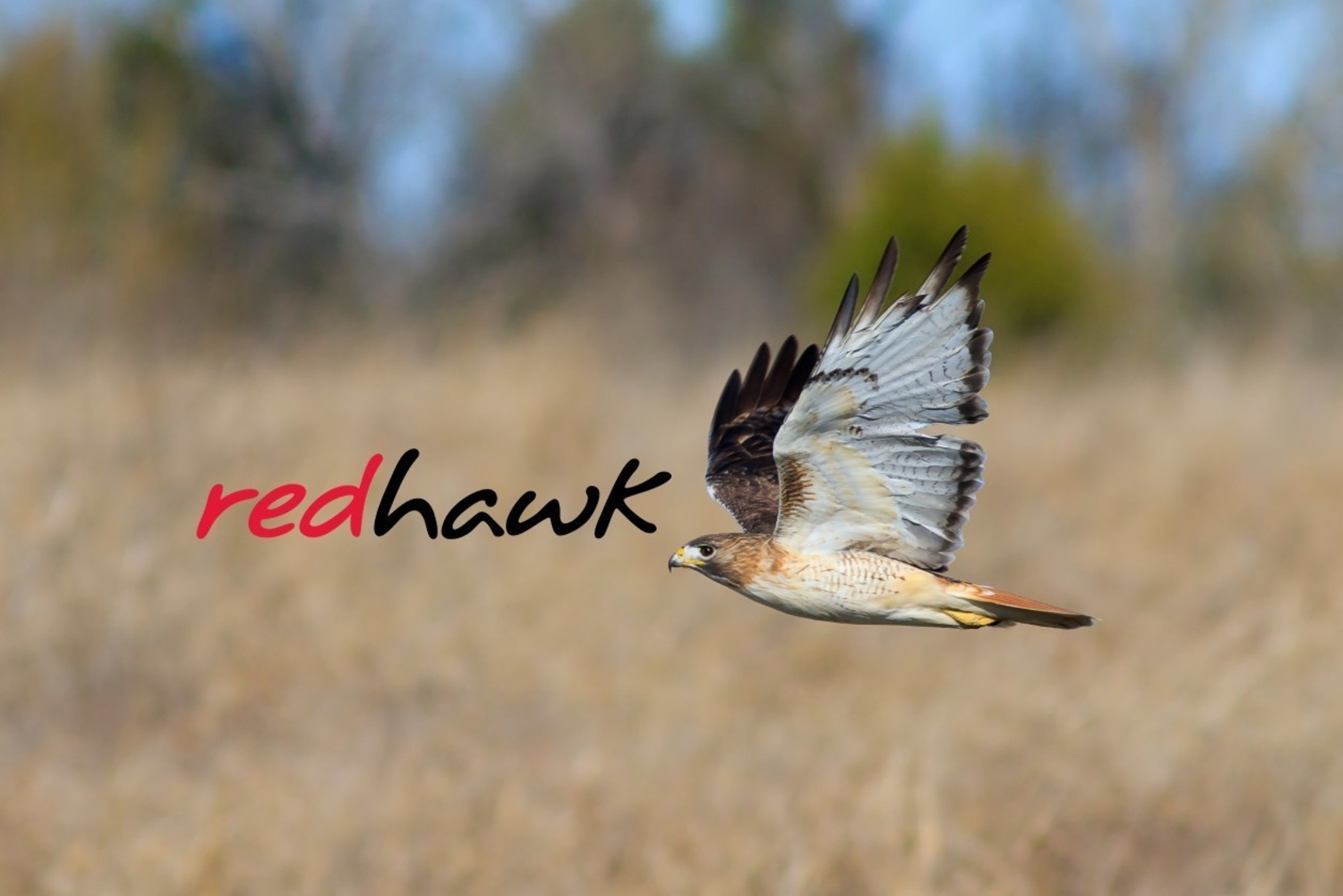 Based in Dallas, Texas, Redhawk Investment Group provides high-yield, low-risk, tax beneficial, alternative and  ...