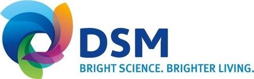DSM Logo (PRNewsFoto/Royal DSM NV)