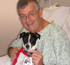 Jack, a Jack Russell terrier that serves as a therapy dog at Sentara Heart Hospital, hangs out with his friend, Jack Jones. Jones and Jack spent a lot of time together while Jones waited for a donor heart while supported by the SynCardia Total Artificial Heart. (PRNewsFoto/SynCardia Systems, Inc.)