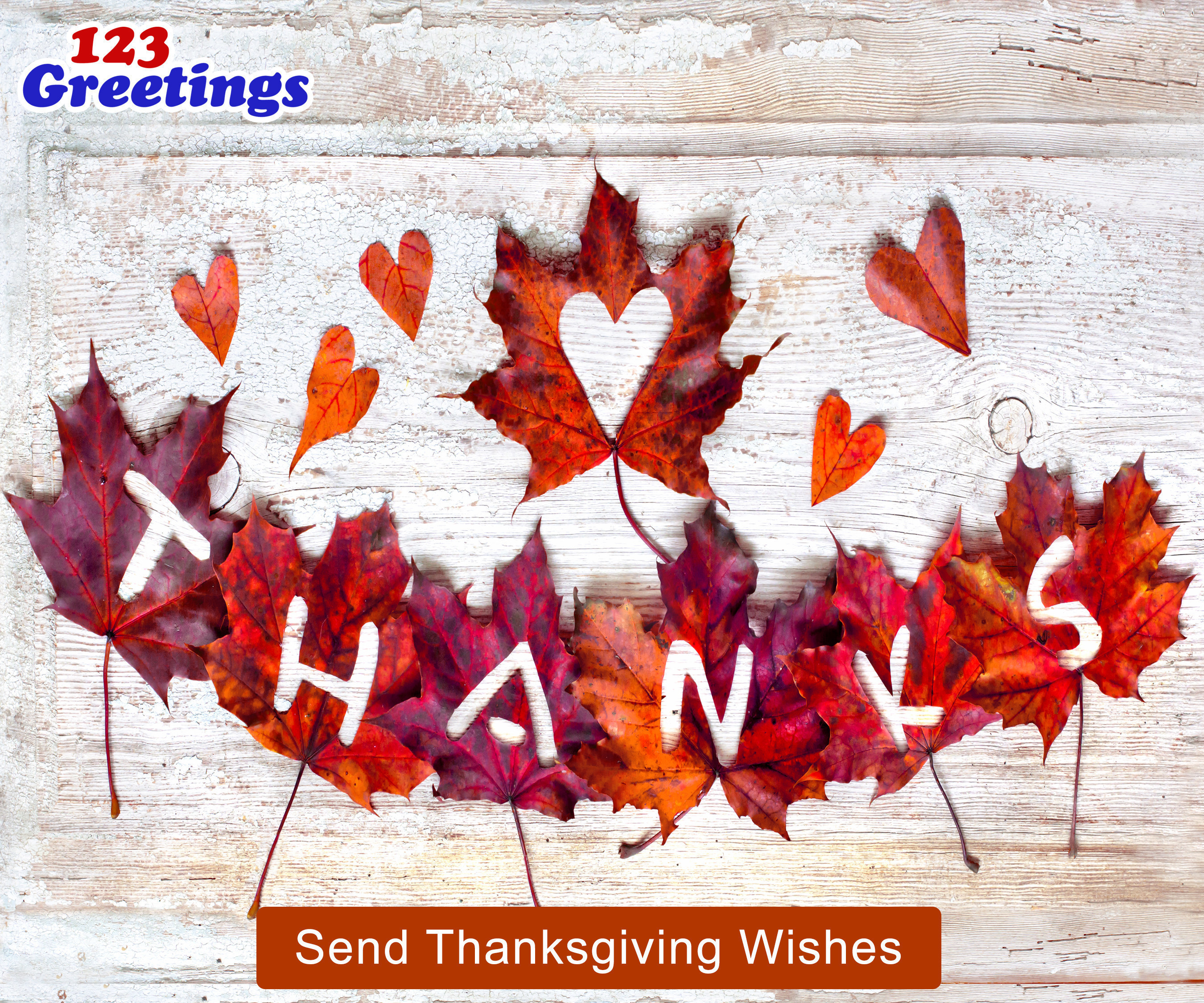 On Thanksgiving, 123Greetings.Com Thanks Its Users For Their Love And Support In Making It Their