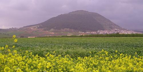 Mount Tavor overlooking the meadows of Galilee, Israel.  (PRNewsFoto/Maurice Labi)