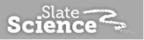 SlateScience...Bringing back the Aha! moments to learning.  (PRNewsFoto/Slate Science)