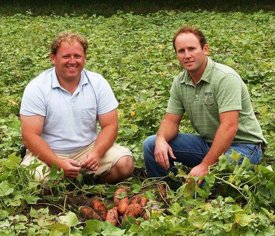 Fifth-generation sweet potato farmers George Wooten III, left, and Adam Wooten continue the family tradition that started in North Carolina on 80 acres and has grown to nearly 4,600 acres in production this year.  Their family company, Wayne E. Bailey Produce, expects to ship about 4 million 40-lb. cartons from the 2015 crop, some of which will go to Sweet Tomatoes restaurants throughout the Southeast United States.