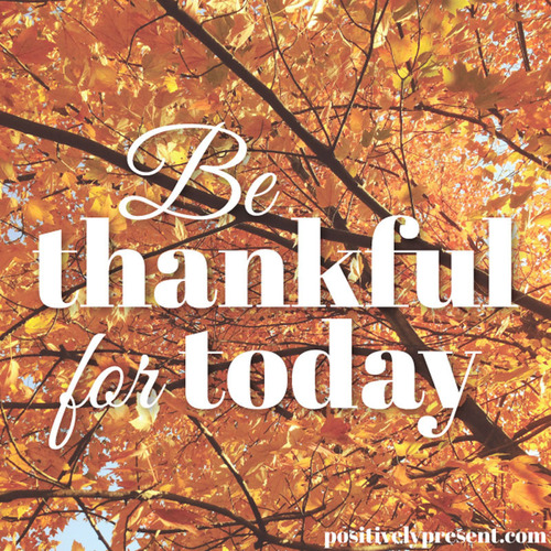 Be Thankful. (PRNewsFoto/Dani DiPirro) (PRNewsFoto/DANI DIPIRRO)