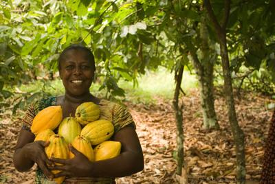 Fair Trade farmer from the Kuapa Kokoo cooperative in Ghana. (Credit: David Greenwood-Haigh for Divine Chocolate). (PRNewsFoto/Catholic Relief Services)
