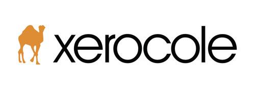 The Intelligent DNS Company. (PRNewsFoto/Xerocole) (PRNewsFoto/XEROCOLE)