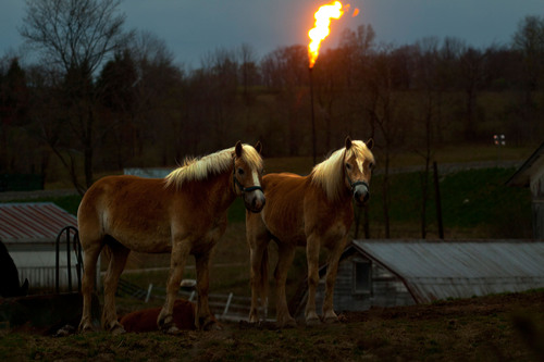 "Reporting from Pennsylvania's natural-gas-rich Marcellus Shale region, host Alex Chadwick covers all sides of the politically volatile ""fracking"" controversy.  SoundVision Productions' BURN: An Energy Journal is back this Fall with a ..."