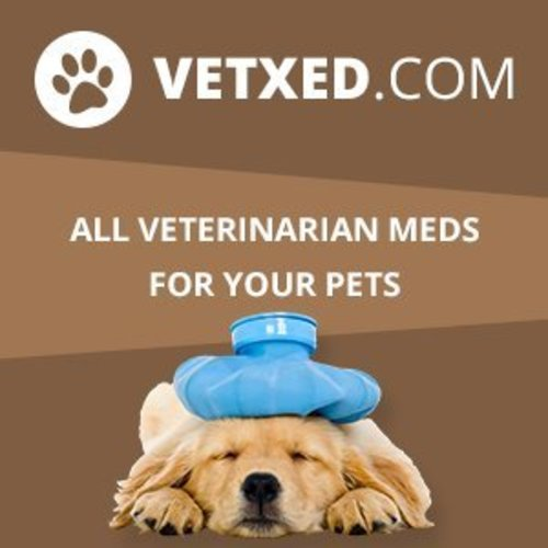 Online Veterinarian Catalog Vetxed.com is now Publicly Available