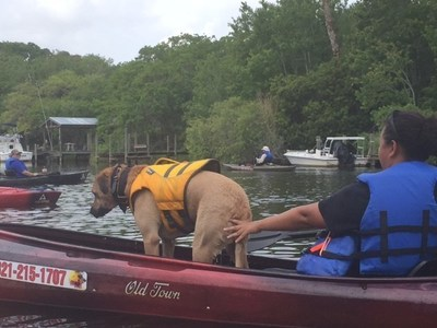 A service dog balances in the kayak, joining wounded veterans on an adventure hosted by Wounded Warrior Project.