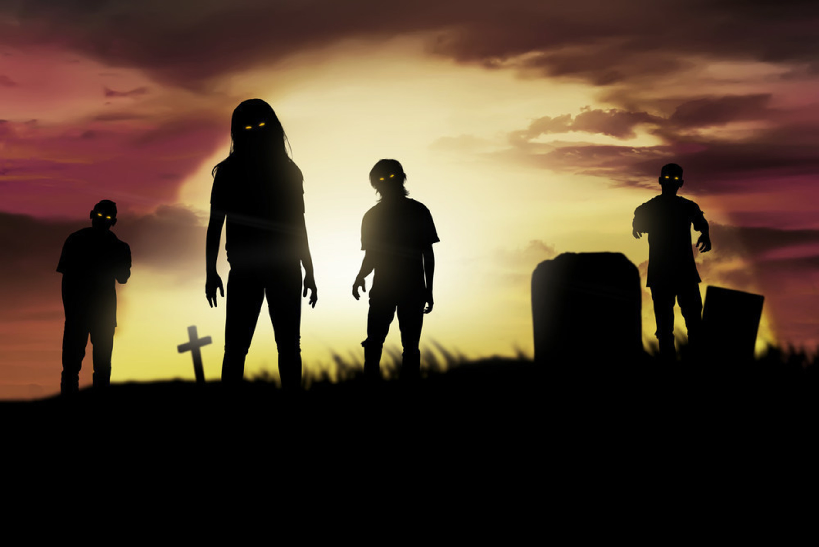 With their expertise in health care, disease transmission and food safety--not to mention their deft bite-avoiding abilities--veterinarians may be all that stand between us and the zombie apocalypse.