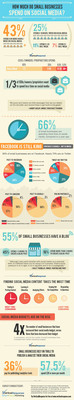 VerticalResponse polled 462 small businesses on how much time and money they spend on social media. This infographic illustrates the survey results.  (PRNewsFoto/VerticalResponse, Inc.)