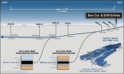 Figure 1: Poplar Grove Cross Section of the No.11 and No.9 Coal Seams and Box-Cut Mine Development
