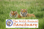 The Wild Animal Sanctuary is the Recipient of a Large Gift