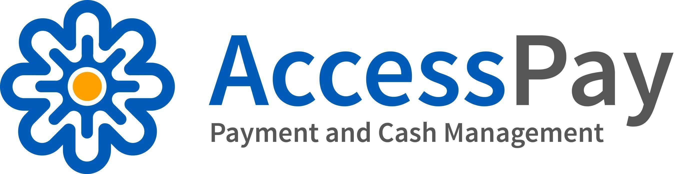 AccessPay Appoints Technology Leader Anish Kapoor as New CEO