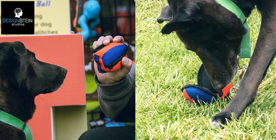 K9 Training Ball - Small Business Launches a Product That Actually Works. Frustrated with inadequate quality products, a retailer decides to redesign and sell something better.