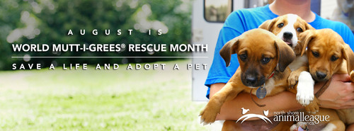 North Shore Animal League America - the world's largest no-kill animal rescue and adoption organization - ...