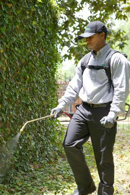 Terminix now offers an eco-friendly mosquito service. Visit terminix.com. (PRNewsFoto/Terminix)