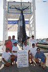 Team Cotton Patch from Orange Beach, AL proudly displays the tournament record 899.6 pound blue marlin caught at the 13th Annual Emerald Coast Blue Marlin Classic at Sandestin Golf and Beach Resort in Miramar Beach, Florida. The record catch earned the team a top prize of $195,277 for an event that distributed more than $1.5 million in winnings. (PRNewsFoto/Sandestin Golf and Beach Resort)