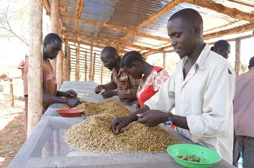USAID Joins Nespresso and TechnoServe to Support South Sudan's Coffee Farmers (PRNewsFoto/Nespresso)
