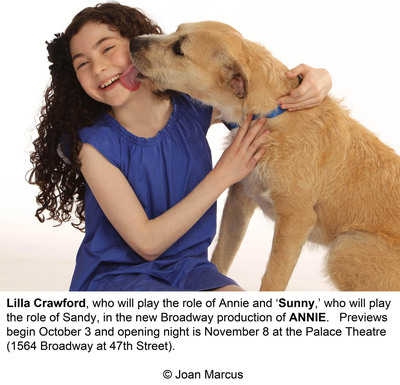 PEDIGREE® Food For Dogs And ANNIE® The Musical Partner To Raise $1 Million For Shelter Dogs