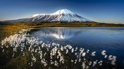 A Volcano standing in the background with flowers swaying in the wind