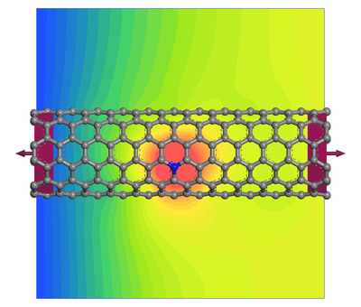 Nanotube transport device showing the effect of a nitrogen defect on electron transport. (PRNewsFoto/Accelrys, Inc.) (PRNewsFoto/ACCELRYS, INC.)