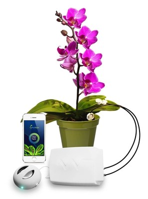 Plants do talk - PhytlSigns lets us listen in (PRNewsFoto/PhytlSigns)