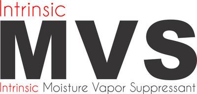 Intrinsic MVS