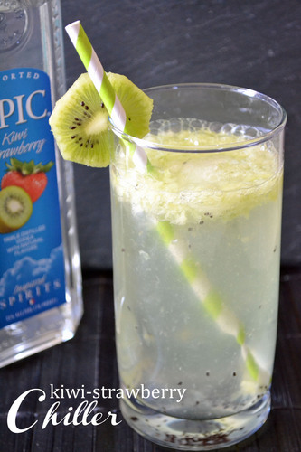 Enjoy refreshing summer cocktails made with EPIC Vodka! Visit www.epicvodka.com for drink ...