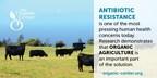 Organic practices help reduce exposure to antibiotic-resistant bacteria