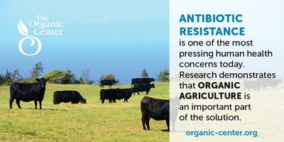 Organic agriculture is part of the solution for lessening exposure to antibiotic-resistant bacteria.