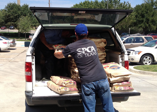 In response to Hurricane Isaac in 2012, Hill's works with the SPCA of Texas to deliver bags of Science Diet for dogs and cats. Hill's has established a first-of-its-kind Disaster Relief Network of nearly 100 participating shelters to more efficiently help feed pets in need when disaster strikes. Photo credit: SPCA of Texas.   (PRNewsFoto/Hill's Pet Nutrition)
