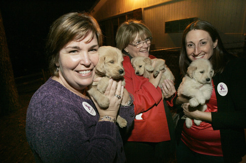 UCB Presents Donations to Canine Assistants in Honor of Epilepsy Awareness Month (Pictured from left: Kristie Madara, UCB; Patty Fritz, UCB; Andrea Levin, UCB)  Photo Credit: John Amis/Associated Press (PRNewsFoto/UCB)