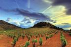 The beauty of La Rioja, Spain