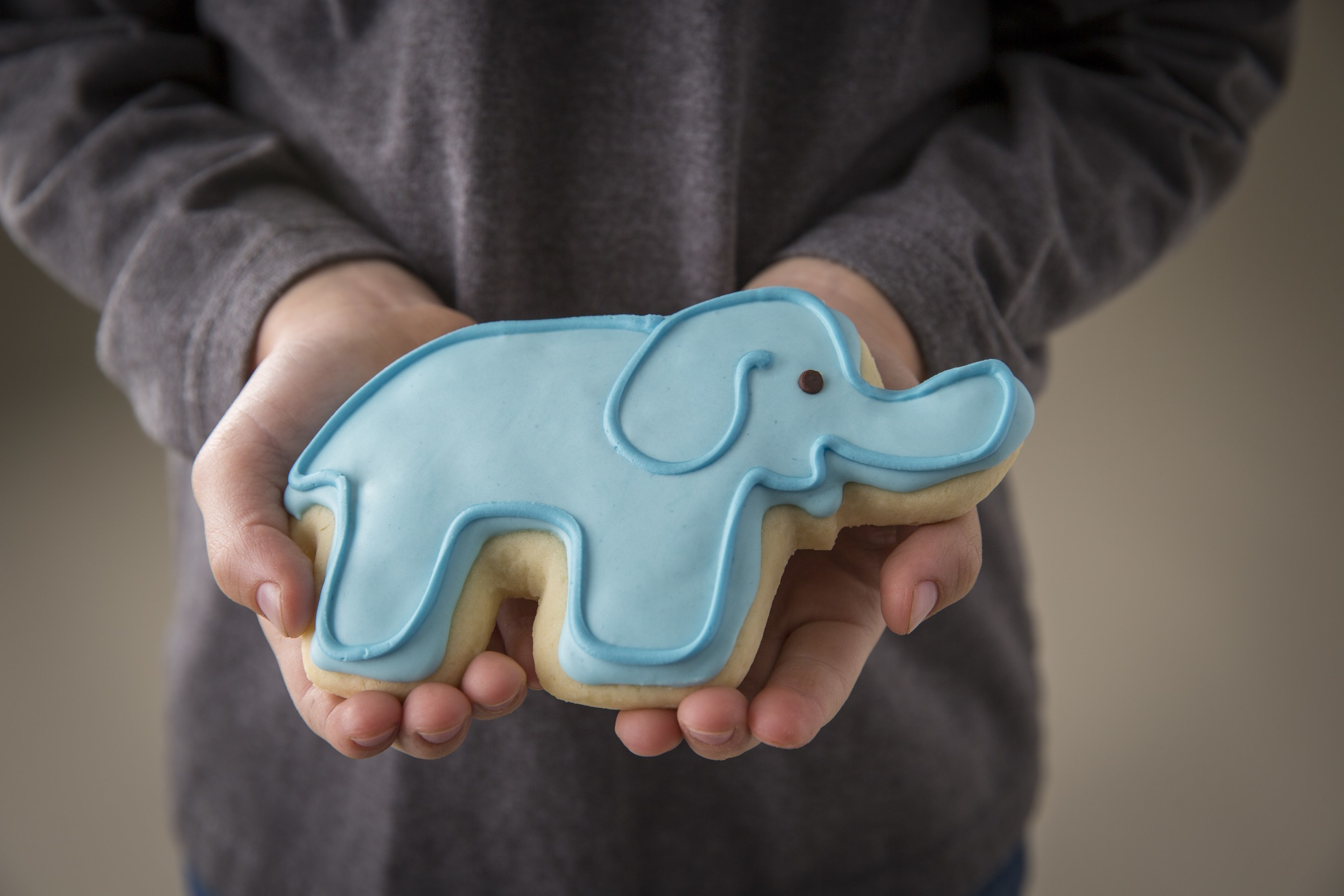 Throughout the month of September, all 52 Kneaders locations throughout the Western region will be selling elephant-shaped sugar cookies. One-hundred percent of the sales will go toward groundbreaking research into elephant DNA that may unlock the cure to childhood cancer.
