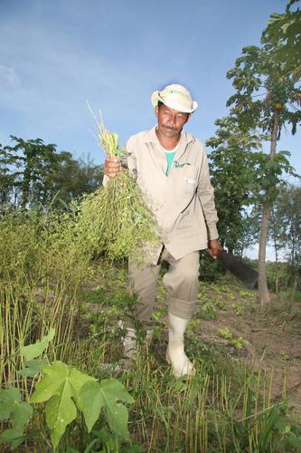 Fazenda Nutribotanica localizada no estado de Ceara, Brasil.  (PRNewsFoto/Amway Latin America, Alex Ribeiro)