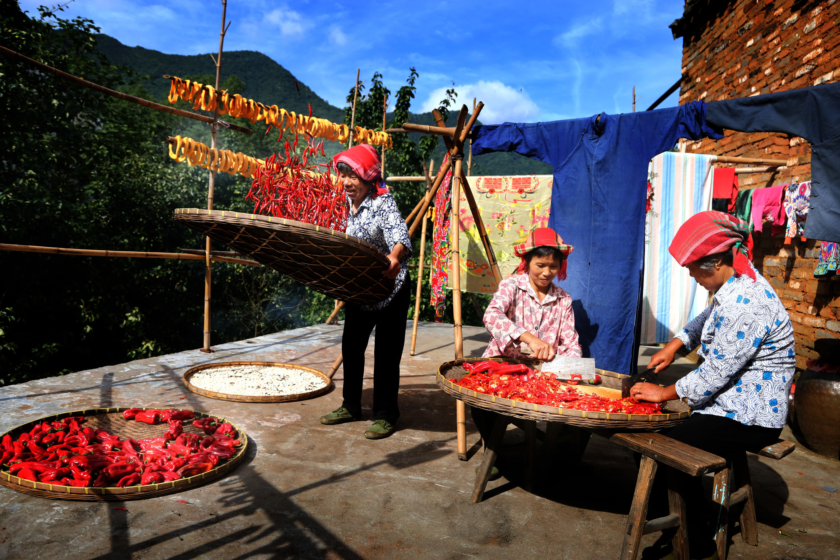 Huangling's signature spectacle shaiqiu is a symbol of the village's historic and cultural heritage. Throughout the year, villagers are sun drying harvests and produces like hot chili peppers, pumpkin slices and chrysanthemum flowers in bamboo baskets on rooves across Huangling to preserve the foods. (Photo: Qun Liu)