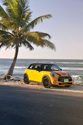 MINI records strongest-ever first quarter.