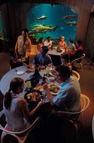 Vacationers with Food Allergies Now Have New and Personalized Dining Options at SeaWorld, Busch