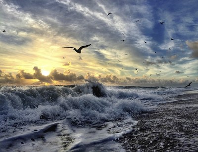 Andy Royston, also know by many as @FtLauderdaleSun, instructs an intimate four-part iPhoneography series at Village Design in Fort Lauderdale, Florida.