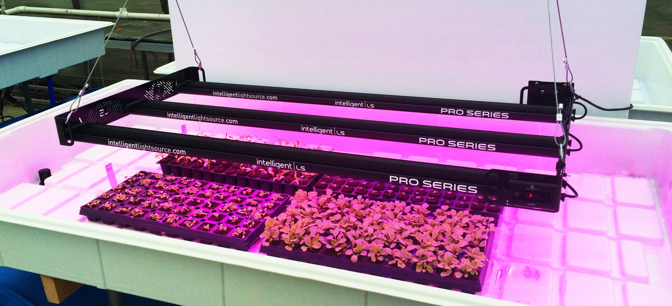 ILS is positioned to become a leader in the indoor grow light industry projected to reach $3.6 B by 2020