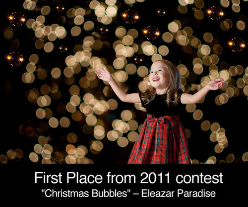 "Last year's winning photo ""Christmas Bubbles"" by Eleazar Paradise - Austin, Texas.  (PRNewsFoto/Mozart's Coffee Roasters)"