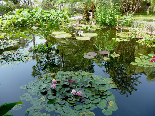 Menton, France's Botanical Garden of the Val Rahmeh was created over a hundred years ago by the former ...