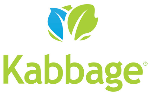 Monsoon Commerce Partners with Kabbage to Offer Customers $20 Million in Working Capital