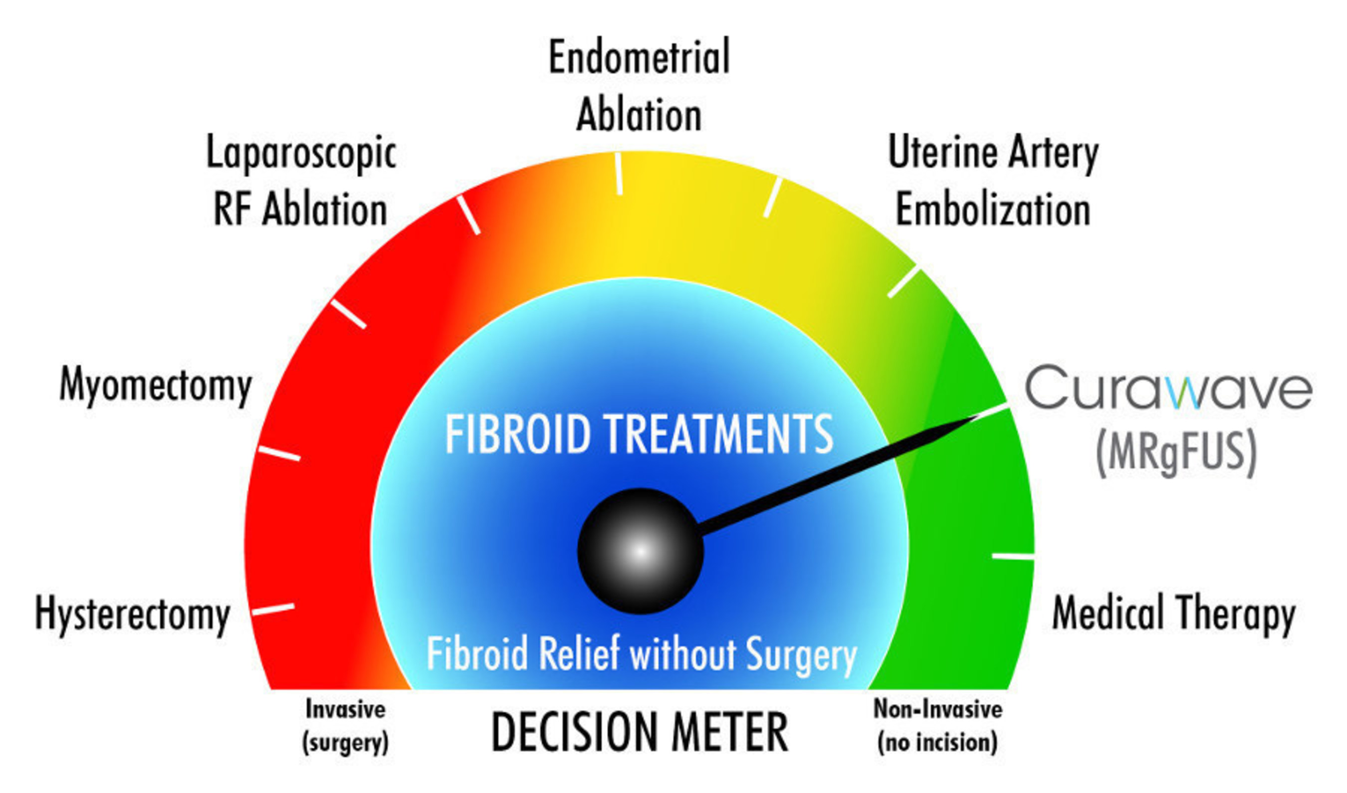 Therapy Options for Uterine Fibroids
