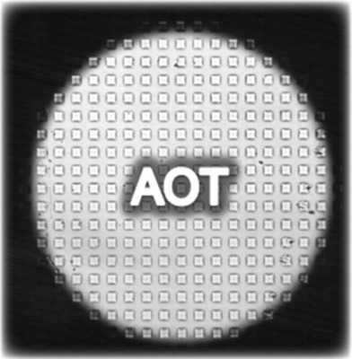 Advanced Optical Technologies logo.  (PRNewsFoto/Advanced Optical Technologies)