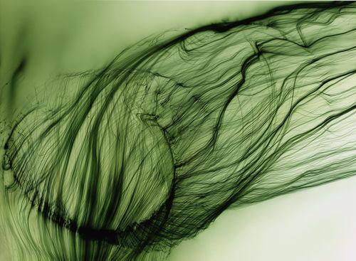Freischwimmer 16, 2003, Â(C) Wolfgang Tillmans Courtesy Galerie Buchholz, Berlin/Cologne. (PRNewsFoto/Hasselblad Foundation)