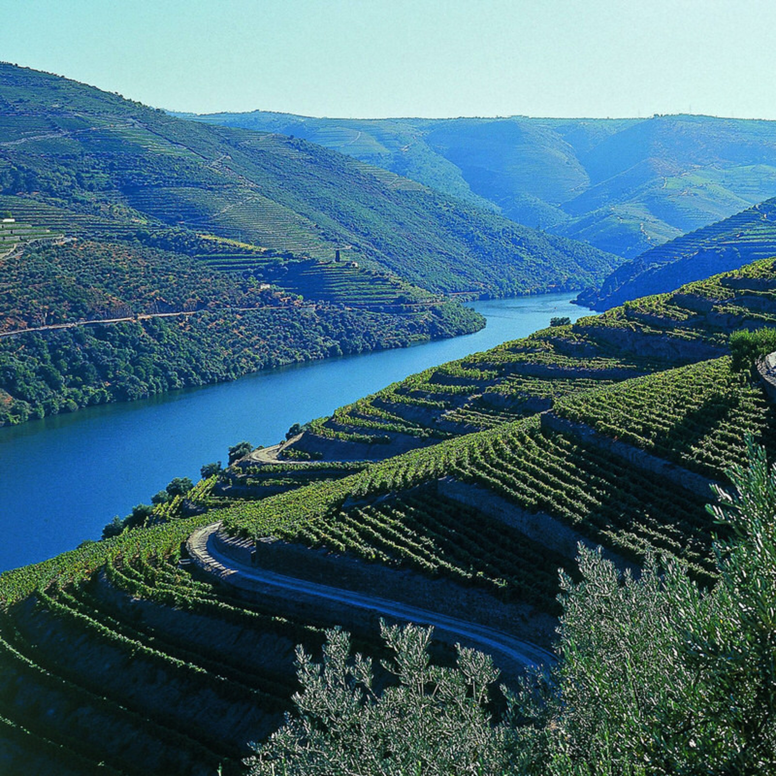 One of the most beautiful motorcycle rides in Europe runs through the Douro Valley and along the Douro River in Northern Portugal. Through vineyards, beautiful villages and in the company of the best hotels and restaurants in the country. Join Allan Karl on an exclusive motorcycle and culinary and culture tour of this remote region.